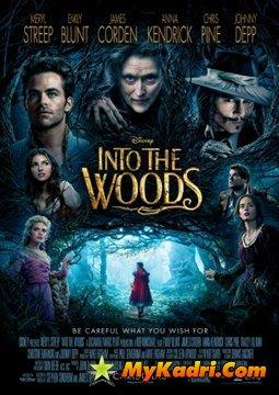 ტყეში / Into the Woods poster