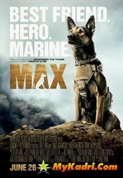 მაქსი / Max